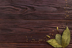 Bay leaves, cloves and caraway seeds on wooden dark textural bac Royalty Free Stock Photo