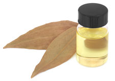 Bay leaves with essential oil Stock Photo