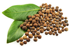 Bay leaves and fragrant pepper. Green bay leaves and fragrant pepper grains on white background Stock Image