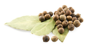 Bay leaves and pepper. On white background Royalty Free Stock Photography