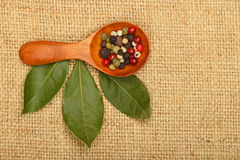 Bay leaves and peppercorn scoop on burlap canvas Stock Image