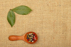 Bay leaves and peppercorn scoop on burlap canvas Stock Images