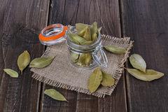 Bay leaves on a rustic wooden background. Bay leaves in a glass jar on a rustic wooden background royalty free stock images