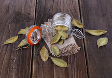 Bay leaves on a rustic wooden background. Bay leaves in a glass jar on a rustic wooden background royalty free stock image