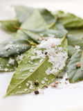 Bay Leaves With Sea Salt Royalty Free Stock Photo