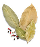 Bay leaves and spices Stock Photos