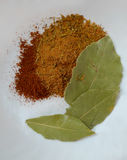 Bay leaves with spices on a white background Stock Image