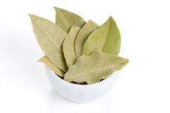 Bay Leaves in a white bowl on white background. Stock Photo