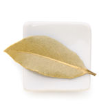 Bay Leaves in a white bowl on white background. Stock Images