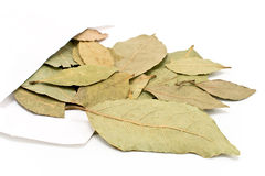 Bay leaves in white paper bag Royalty Free Stock Image