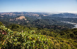 The Bay - Marin County - San Francisco Royalty Free Stock Photos