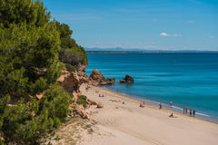 Bay Miami Platja, Tarragona, Spain, sandy beach. Bay Miami Platja, Tarragona, Spain, blue water with sandy beach and pine tree Stock Photography