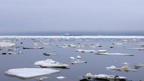 The Bay of Nagaev / Spring Royalty Free Stock Photography