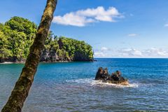 Bay on Big Island, Hawaii. Blue sea with rock; palm tree in foreground. Coastline and blue sky in background. Bay north of Hilo, on Hawaii`s Big Island. Palm royalty free stock images