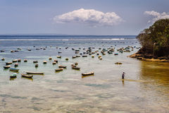 Bay on Nusa Lembongan Stock Images