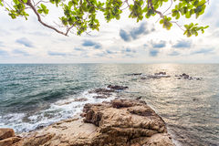 Bay with reef and green leaf in sunset Royalty Free Stock Images