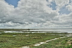 Bay of Somme in Picardie, France Stock Photography