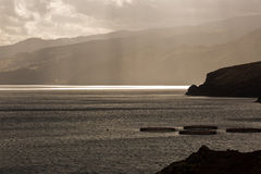A bay at sunset. In Madeira , Portugal Royalty Free Stock Photo