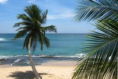 Bay in Tangalle Stock Image