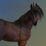 Bay Unicorn Stock Images