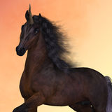 Bay Unicorn Prance. A Unicorn is a creature of fantasy and mythology which has a horn on its head and cloven hooves Royalty Free Stock Photos
