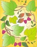 Baya del otoño Imagenes de archivo