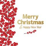 Baya del rojo de la Navidad Imagenes de archivo