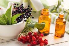 Baya del saúco en el mortero, viburnum, medicinas. Concepto de la homeopatía. Imagenes de archivo