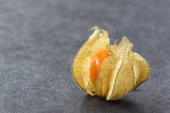 Baya fresca del physalis Foto de archivo