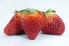 Baya madura orgánica de la fruta fresca de la fresa roja imagen de archivo