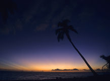 bayahibe黑暗的多米尼加共和国日落 免版税图库摄影