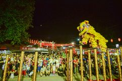 Lion dance performance at the outdoor of snake temple. BAYAN BARU, PENANG/MALAYSIA – February 02 2016: Lion dance performance at the outdoor of snake temple royalty free stock photography