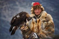 Bayan-Olgii, Mongólia - 1º de outubro de 2017: Eagle Festifal dourado Pele de Fox pitoresca velha de Hunter In Traditional Clothe Foto de Stock