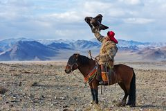 Unknown huntsman with Golden Eagle shows his experience in falconry. Bayan-Olgii, Mongolia - September 30, 2017: Unknown huntsman with Golden Eagle shows his stock images