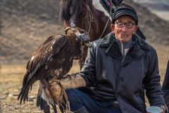 Bayan-Ulgii, Mongólia - 1º de outubro de 2017: Eagle Festival dourado tradicional Mongolian velho de óculos desconhecido Hunter P fotos de stock royalty free