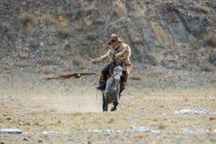 Bayan-Ulgii, Mongólia - 1º de outubro de 2017: Eagle Festival dourado tradicional O voo Eagle And Unknown Mongolian Hunter dourad imagem de stock royalty free