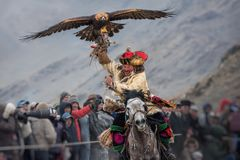 Bayan-Ulgii, Mongolia - October 01, 2017: Golden Eagle Festival. Triumphant Mongolian Hunter Berkutchi In Traditional Clothes Ridi