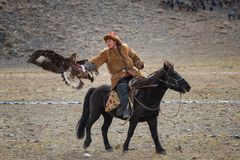 Bayan-Ulgii, Mongolia - October 01, 2017: Golden Eagle Festival.Unknown Mongolian Hunter  So Called Berkutchi  Astride On Brown. Horse And Flying Golden Eagle Royalty Free Stock Photos