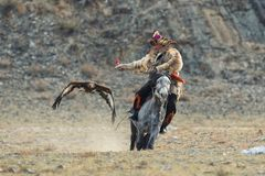 BAYAN-ULGII, MONGOLIA - OCTOBER 01, 2017:  Traditional Golden Eagle Festival. The Flying Golden Eagle And Unknown Mongolian Hunter Royalty Free Stock Photography