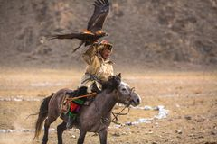 Kazakh Eagle Hunter traditional clothing, while hunting to the hare holding a golden eagle on his arm in desert mountain. BAYAN-ULGII, MONGOLIA - SEP 30, 2017 Royalty Free Stock Photography