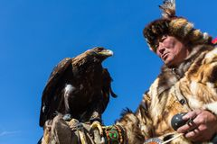 Mongolian Kazakh Eagle Hunter traditional clothing, holding a golden eagle on his arm Stock Photo