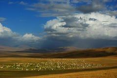 Bayanbulak grassland. Autumnal scenery China Royalty Free Stock Image