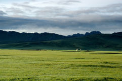 Bayanbulak Grassland Royalty Free Stock Photos