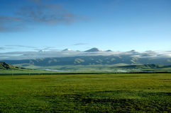 Bayanbulak Grassland. Moor、snow mountain the pride of the morning royalty free stock photography