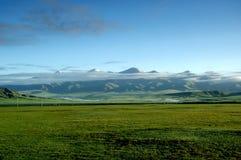 Bayanbulak Grassland Royalty Free Stock Photography