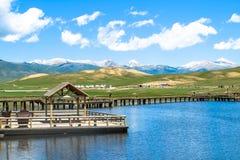 Bayanbulak-Wiesen-nationales Naturreservat lizenzfreies stockbild