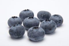 Bayas azules Foto de archivo libre de regalías