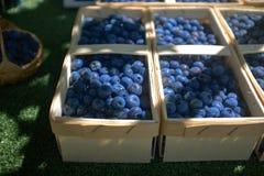 Bayas azules cultivadas en pequeñas cestas en un mercado fotos de archivo libres de regalías