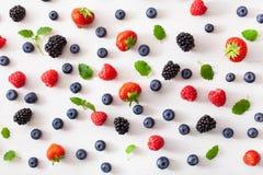 Bayas clasificadas sobre el fondo blanco ar?ndano, fresa, frambuesa, zarzamora foto de archivo libre de regalías