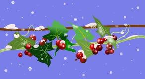 Bayas con el rastro y la nieve stock de ilustración